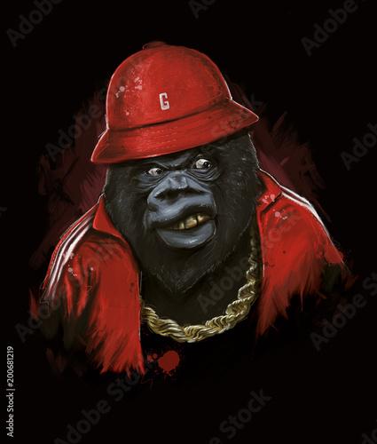 Photo Hip Hop Gorilla