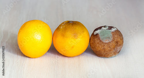Fotografía  Three oranges in the drying out stage