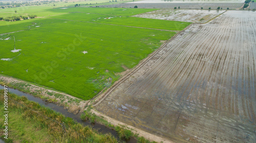 Poster Donkergrijs Aerial view from flying drone of Field rice with landscape green pattern nature background / top view field rice