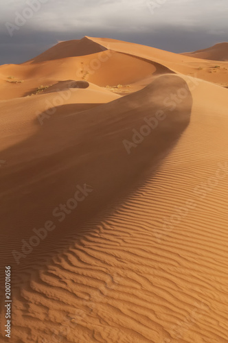 Sahara dunes at sunrise;  near Merzouga, Morocco