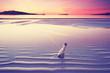 romantische Stimmung am Meer