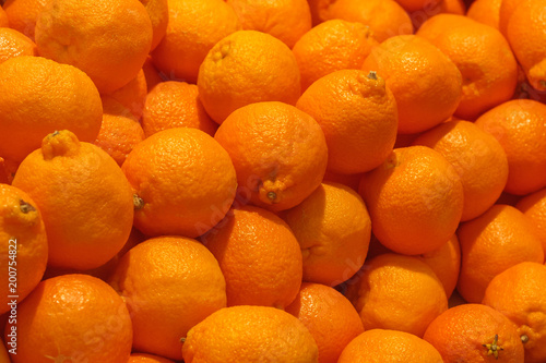 Fototapeta A pile of orange Clementines fruits or minneola tangelo as background, texture obraz