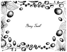 Hand Drawn Frame Of Acai Berri...