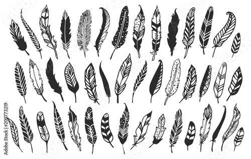 Rustic decorative feathers. Hand drawn vintage vector design set Canvas-taulu
