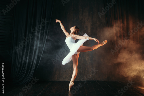 Fotografie, Obraz  Ballerina in white dress dancing in ballet class