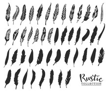 Hand Drawn Vintage Feathers. R...