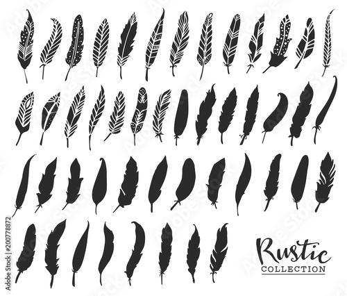 Hand drawn vintage feathers. Rustic decorative vector design elements. Wall mural