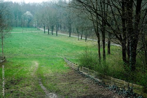 Tuinposter Weg in bos Park