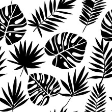 Green Tropical Leaves. Vector ...