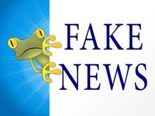 Fake News Sad Frog Shows Untrue 3d Illustration