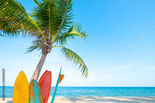 Vintage surf board with palm tree on tropical beach in summer.