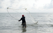 The Fisherman Cast A Net The S...