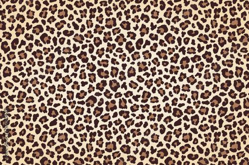 Photo  Leopard fur print, horizontal texture with dark borders. Vector