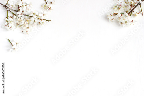 Spring prunus, cherry blossoms on a old white wooden table. Feminine still life floral composition, banner, flat lay, top view.
