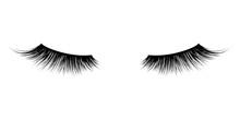 Eyelash Or Lash Mascara Vector...