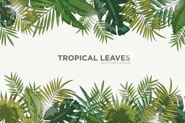 Vodoravna pozadina sa zelenim lišćem tropske palme, banane i monstere. Elegantna pozadina ukrašena lišćem egzotičnih biljaka džungle. Prirodni okvir ili obrub. Vektorska ilustracija.