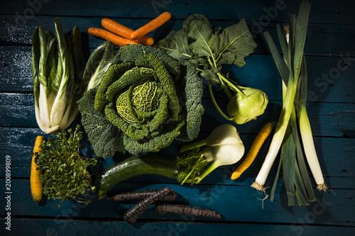 Wirsing, Mangold, Kohlrabi, Fenchel, Porree, Zucchini, Karotten und Radieschen-Kresse
