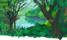 Dense, Green Tropical Forest And A Flowing Fresh Water River.