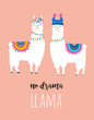 Llama illustration, cute hand drawn elements and design for nursery design, poster, greeting card