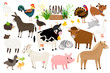 Farm animals. Domestic farm animal collection isolated on white, goose and donkey, pig and goat, cow and sheep vector