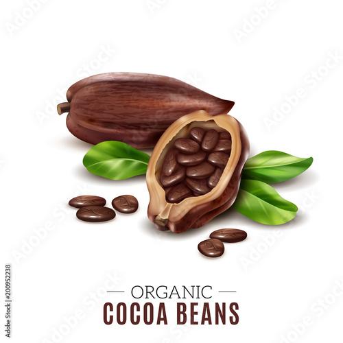 Fotografía  Realistic Cocoa Composition