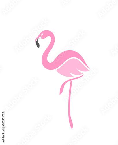 Fotografia, Obraz Flamingo. Logo
