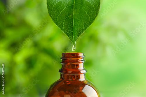 Fototapeta Dripping of essential oil into bottle on blurred background obraz na płótnie