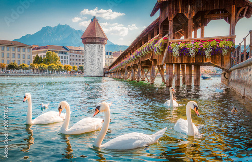 Fotobehang Zwaan Historic town of Luzern with famous Chapel Bridge, Switzerland
