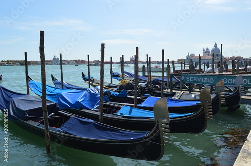 Fotografie, Obraz  Veneza Itália