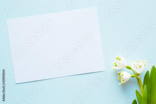 Plakat Biały pusty kartka z pozdrowieniami z świeżymi, pięknymi śnieżyczkami na błękitnym tle. Pierwsi posłańcy wiosny. Puste miejsce na tekst. Widok z góry.