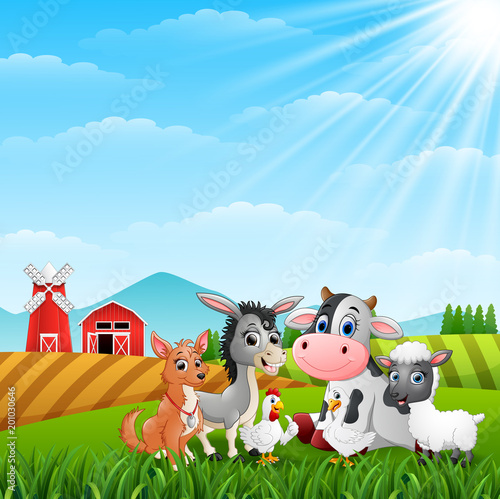 Poster Dogs Cute animals farm in the hills