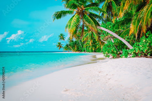 Foto  tropical sand beach with palm trees