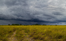 Beautiful Landscape In The Part Of The Florida Everglades Called Chekili During A Severe Summer Storm. Chekili Is Closed To The Public Now Due To Flooding And Budget Cuts