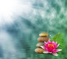 Image Of Lotus Flower On Water Background