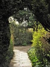 Shady Garden Path Through An A...