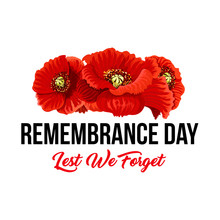 Remembrance Day Lest We Forget...