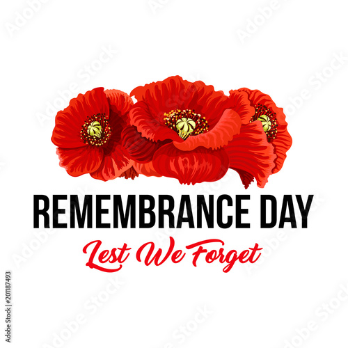 Remembrance day Lest We Forget vector poppy icons Wallpaper Mural