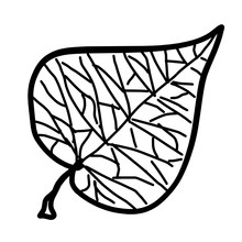 Outline Image Of A Leaf