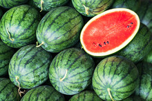 Many Big Green Watermelons