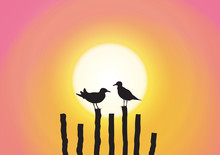 Silhouette Of Two Seagull Sitt...