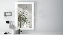 Scandinavian Entrance Lobby Hall With Mirror Reflecting Bright Bathroom With Olive Tree, Minimalist White Interior Design