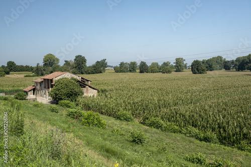 Deurstickers Blauwe hemel Rural landscape along the Po cycle path