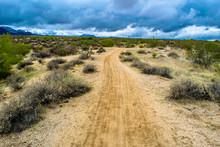 McDowell Wilderness In Arizona...