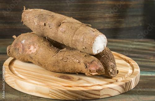 Fotografie, Obraz  Cassava raw tuber - Manihot esculenta