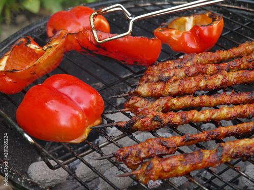 In de dag Grill / Barbecue Grill