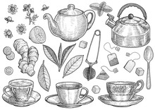 Collection Of Tea Illustration...