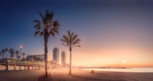 Orange Sunrset On Beach Of Barcelona With Palm
