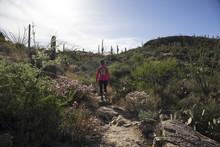 A Fit Hispanic Woman Is Hiking...