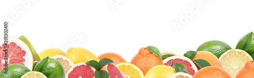 Poster Vruchten Citrus fruit