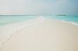 Paradise beach with palm trees and ocean on an island